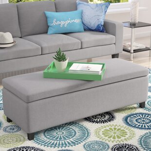 Zipcode Design Ewan Upholstered Storage B..