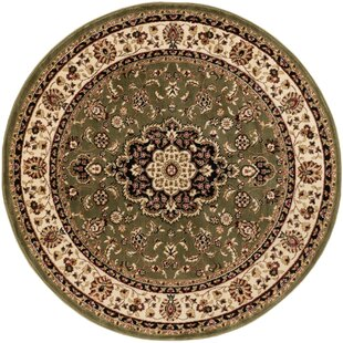 Belliere Medallion Green Area Rug by Astoria Grand