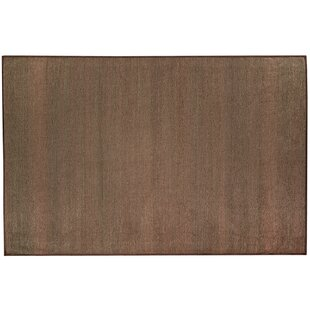 Stain Resistant Polyester Espresso Indoor/Outdoor Area Rug