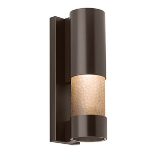 Big Save 1-Light Outdoor Sconce By Orren Ellis