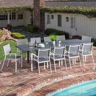 Latitude Run Ilya 11 Piece Patio Dining Set