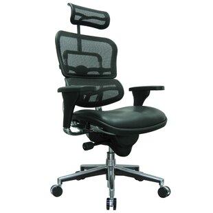 Symple Stuff Amador Mesh Desk Chair