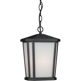 Esters 1-Light Outdoor Hanging Lantern By Brayden Studio Outdoor Lighting