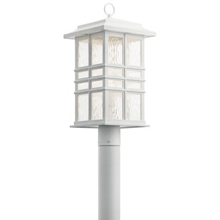 Marjorie Outdoor 1-Light Lantern Head by Breakwater Bay