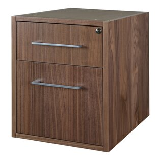 Hilburn 2-Drawer Vertical Filing Cabinet