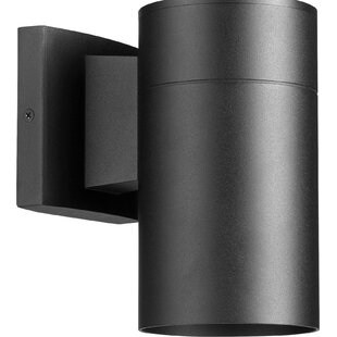 Ensa 1-Light Outdoor Sconce