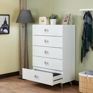 Persia Traditional 5 Drawer Chest by Wrought Studio