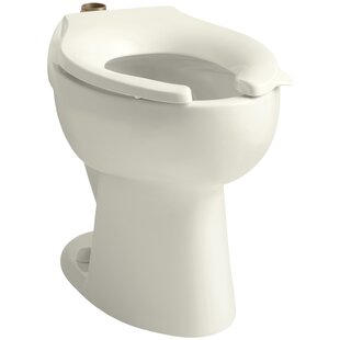16 inch toilet seat. Highcrest 1 6 GPF 16 2  Ada Elongated Toilet Bowl With Top Inlet Requires Seat 14 Inch Rough Wayfair