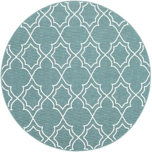 Gilead Trellis Teal/White Area Rug by Alcott Hill