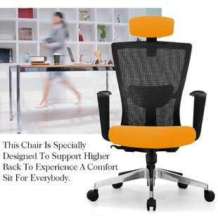 Meghans Mesh Task Chair by Ebern Designs