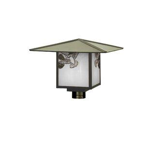 Wydra Hummingbird Lantern Head by Loon Peak