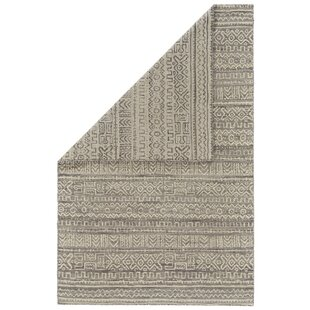 Find for Reiber Hand-Woven Wool White/Gray Indoor/Outdoor Area Rug Great price