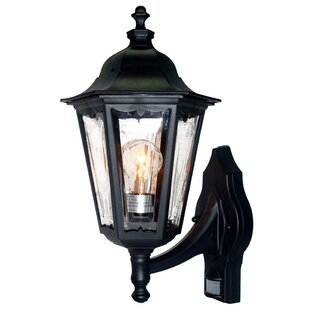 August Grove Mishra Outdoor Sconce