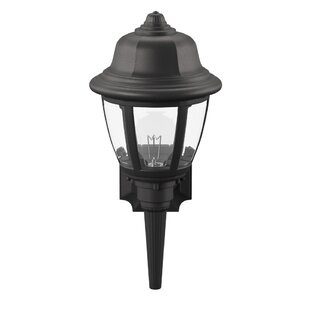 Donegan 1-Light Outdoor Sconce