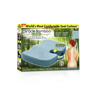 Great Price Miracle Bamboo Seat Cushion ByAlwyn Home