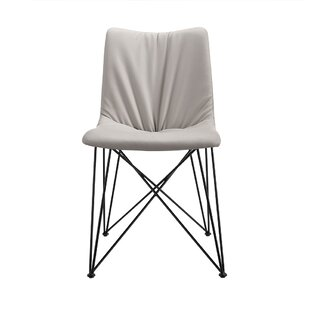 Rayl Side Chair (Set of 2) Brayden Studio
