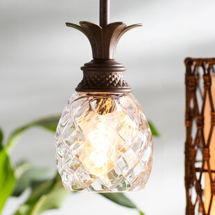 Beachcrest Home Terry 1-Light Cone Pendant