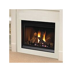 Napoleon Clean Face Direct Vent Wall Mount Gas Fireplace & Reviews ...
