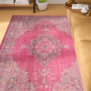 Find for Villanova Fuchsia/Navy Area Rug By Bungalow Rose