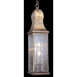 Framburg Preston 3-Light Outdoor Hanging Lantern