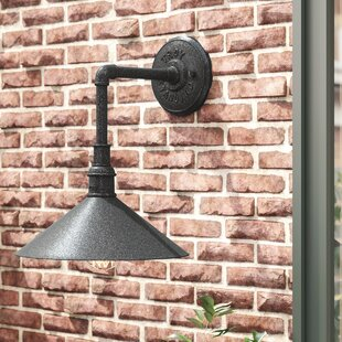 Shalena 1-Light Outdoor Barn Light