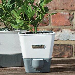 Cole U0026 MasonIndoor Herb Garden Self Watering Carbon Steel Pot Planter