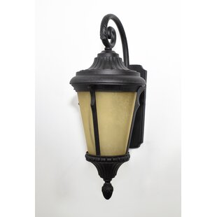 Purchase 1-Light Outdoor Wall Lantern By Beachcrest Home
