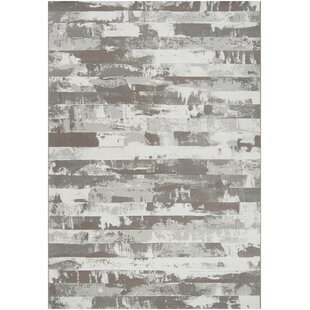 Find for Chamlee Dark Brown/White Area Rug By 17 Stories