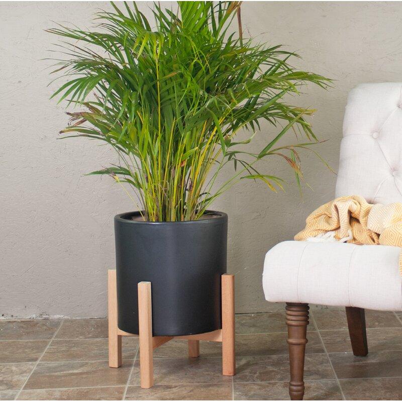 George Oliver  Brathwaite Ceramic Pot Planter with Plant Stand Color: Black