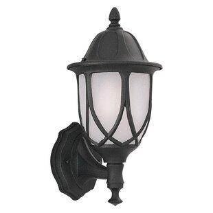 Newburg 1-Light Outdoor Wall lantern