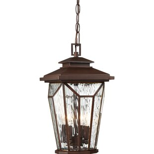 Darby Home Co Auberkonos 4-Light Outdoor Hanging Lantern