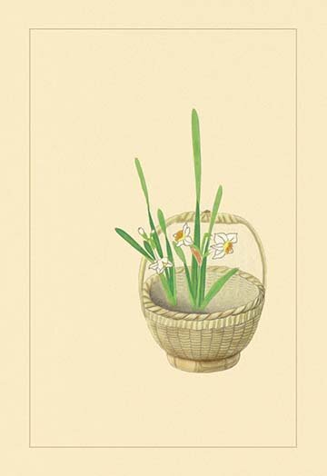 Buyenlarge Narcissus By Sofu Teshigawara Painting Print Wayfair