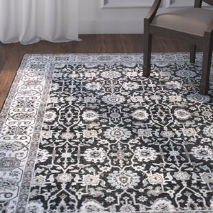 Bargain Adkisson Black Area Rug By Astoria Grand