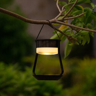 Southerland Solar Accent 1 Light Outdoor Hanging Lantern