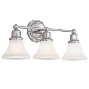 Charlton Home Deandre 3-Light Vanity Light
