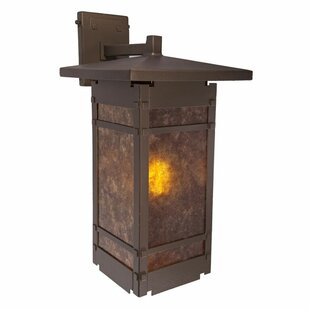 Lanai 1-Light Outdoor Wall Lantern by Ste..