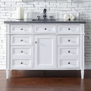 Deleon Traditional 48 Single Cottage White Bathroom Vanity Set by Darby Home Co