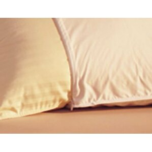 Allery Resist Pillow Protector by Alwy..
