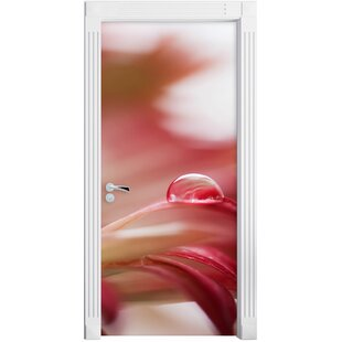 Raindrops On A Rose Coloured Flower Petal Door Sticker By East Urban Home