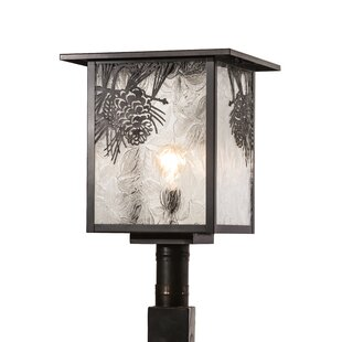 Hyde Park Winter 1-Light Lantern Head by Meyda Tiffany