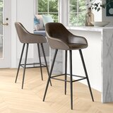 Willow Bar & Counter Stool (Set of 2) by Foundstone™