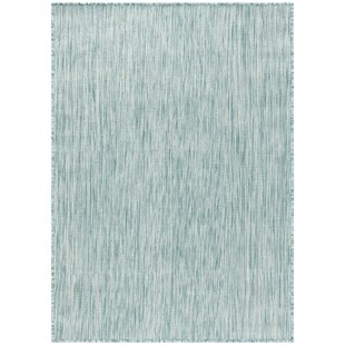 Ephraim Aqua Indoor/Outdoor Area Rug