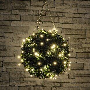 Pringle LED Fairy Lights By The Seasonal Aisle