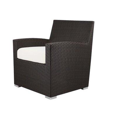 Peachy Roose Lounge Chair Brayden Studio Fabric Sunbrella Natural Lamtechconsult Wood Chair Design Ideas Lamtechconsultcom