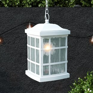 Coupon Lockett 1-Light Outdoor Hanging Lantern By Brayden Studio