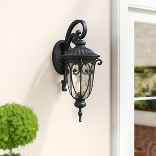 Macomber Outdoor Wall Lantern by Astoria Grand