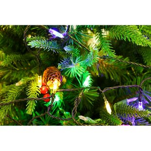 Bargain 100 Fairy String Light By Festival Depot