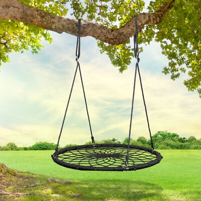 Outdoor Tree Swing For Adults Wayfair