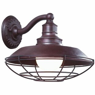 Buy luxury Theodore 1-Light Outdoor Barn Light By Darby Home Co