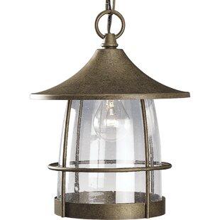 Alcott Hill Triplehorn 1-Light Clear Hanging Lantern